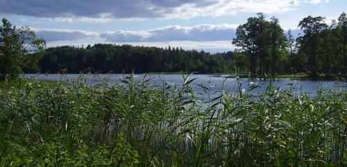 Estonie2006-175.JPG